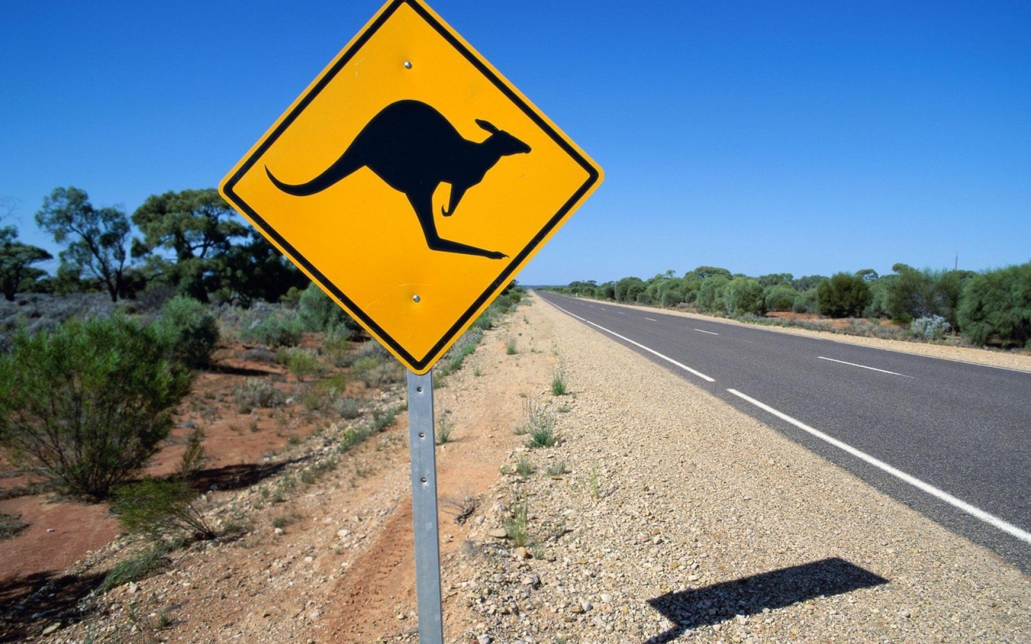 Descubriendo III: Australia
