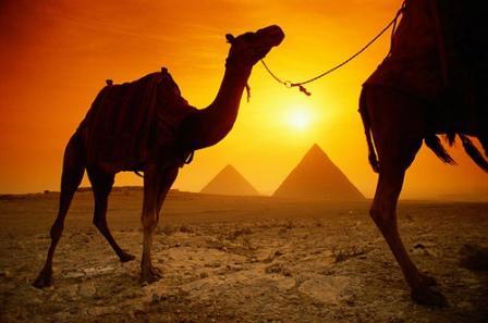 Oportunidades de negocio en Egipto