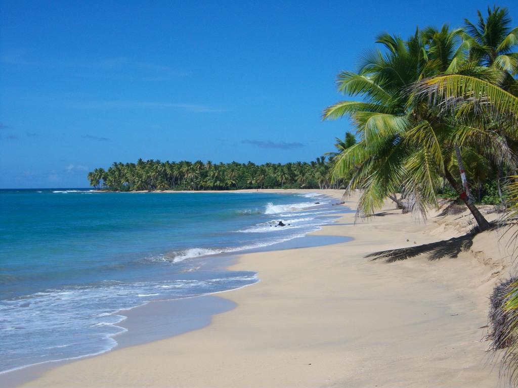 Oportunidades de negocio en República Dominicana