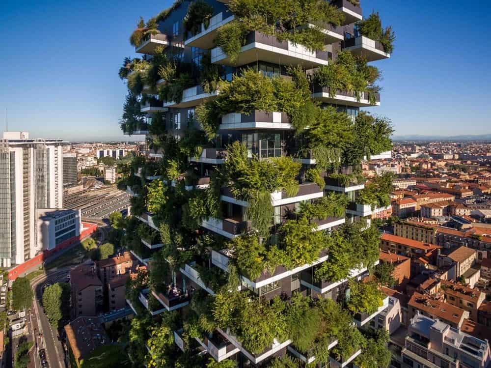 10 refrescantes jardines verticales