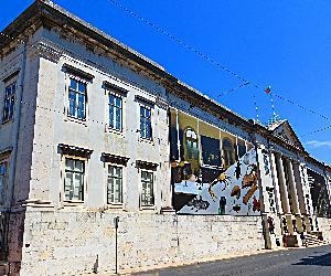 https://upload.wikimedia.org/wikipedia/commons/9/9d/Museu_Nacional_de_Historia_Natural_e_da_Ciencia_-_Universidade_de_Lisboa_-_panoramio.jpg